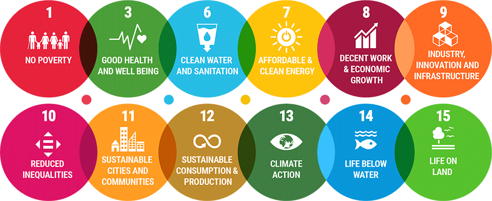 SDGs aligning with the global mission of waste to wealth