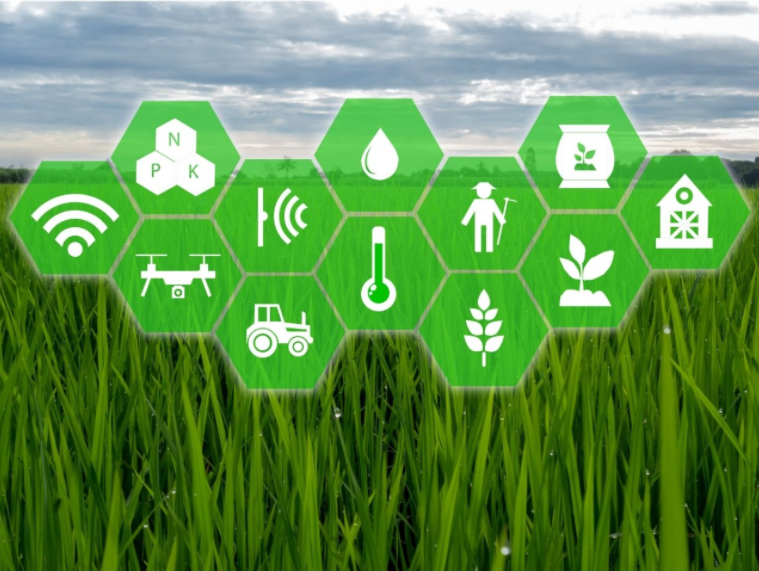 Innovations and Advancement in AgriTech