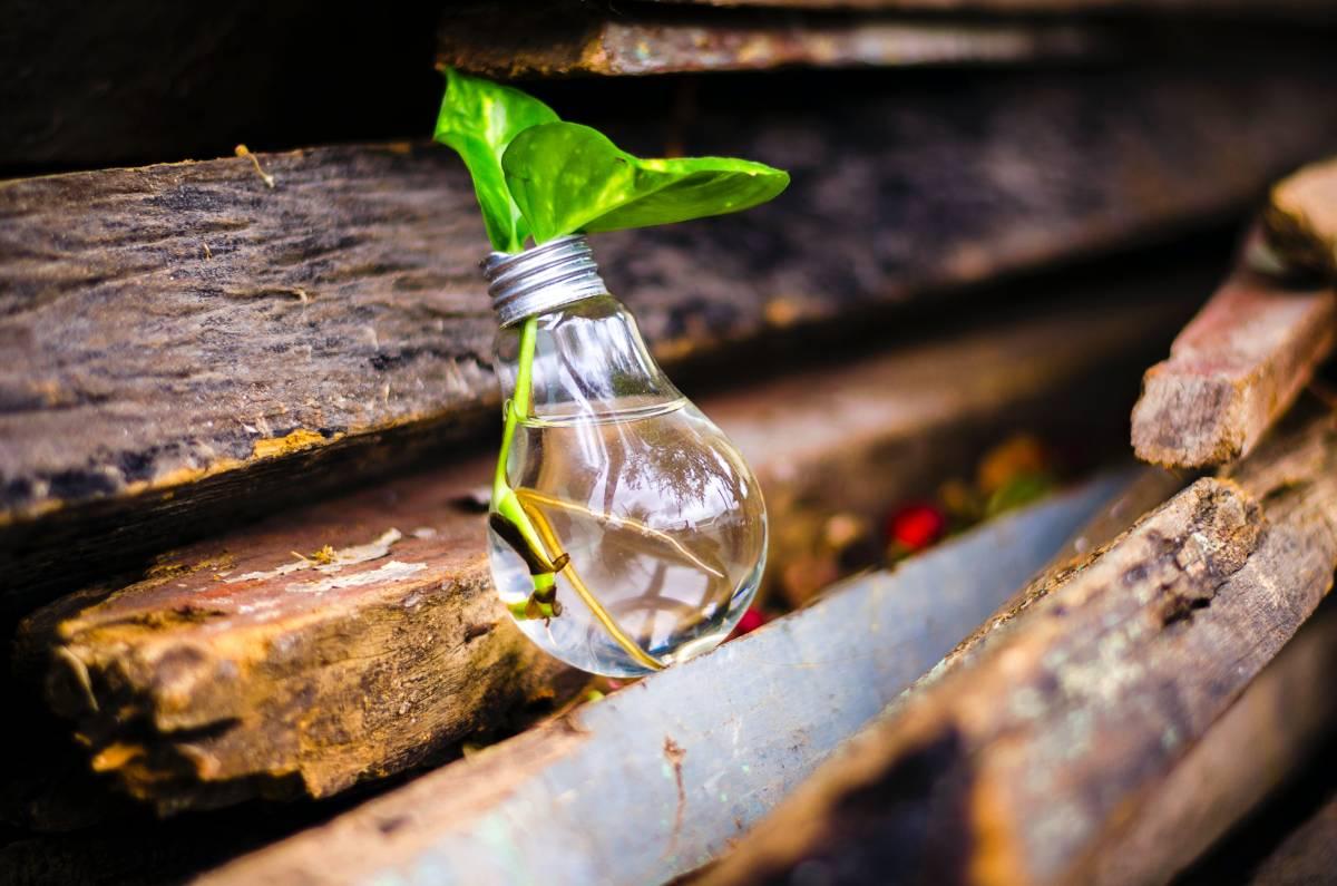 Advancing rural innovations: The second Unnati Showcase
