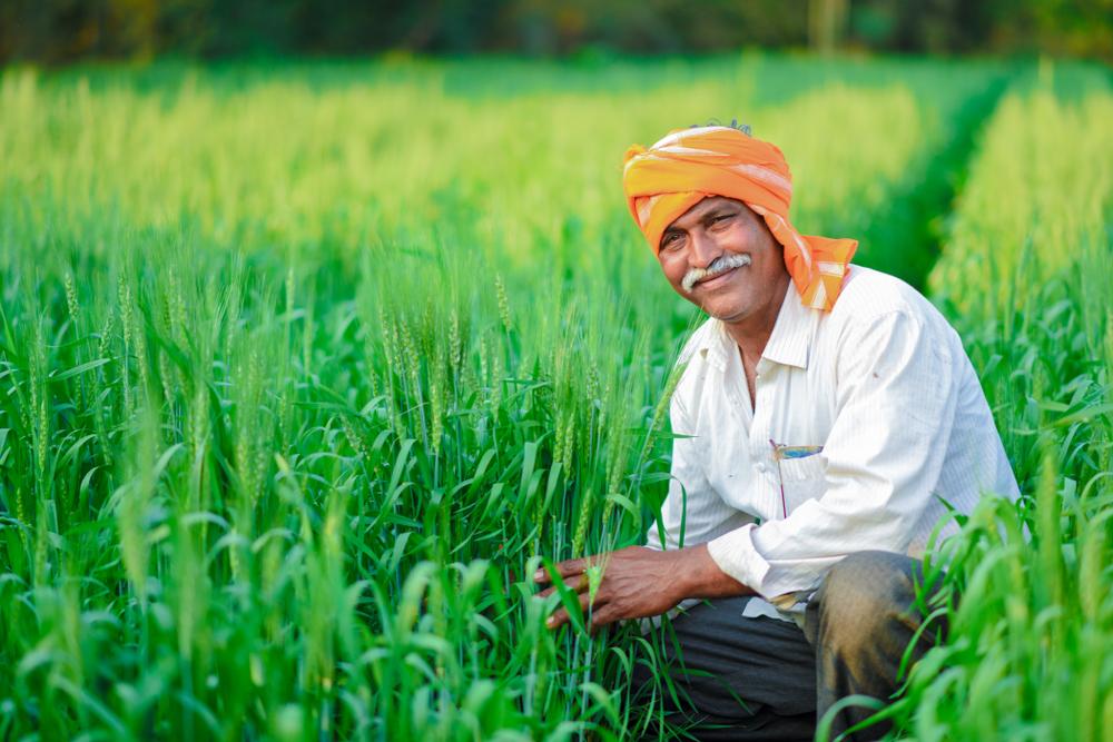 FDI agriculture