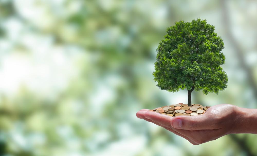 carbon financing