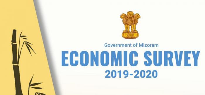Mizoram Economic Survey