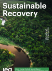 Sustainable Recovery
