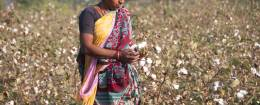 Cotton Textile Industry in India