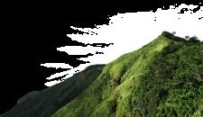 Oportunidades de negócios em Mizoram