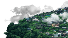 Nagaland Economy