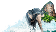 Oportunidades de negócios nas Ilhas Andaman e Nicobar