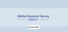 Odisha Economic Survey 2020-21