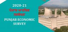 Punjab Economic Survey 2020-21