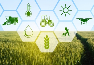 Agriculture Grand Challenge - Seeding innovations in Agriculture