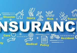 Overview of the Insurance Industry in India