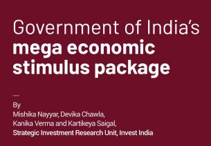 Government of India's mega economic stimulus package