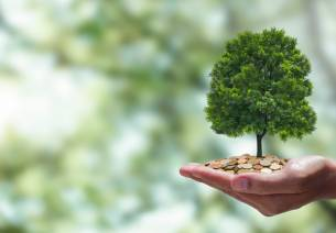 carbon finance